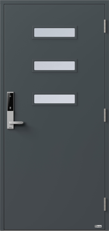 NorDan ytterdør Horisont Alta med RAL7016 farge og ID Lock Sølv
